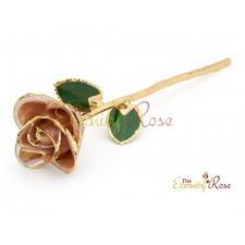 single white rose gift