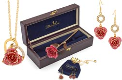 Rose & Jewellery Set
