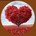 valentine why celebrate - love conquers